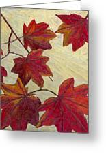 Crimson Branch Greeting Card