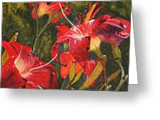 Crimson Light Greeting Card