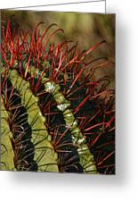 Crimson Thorns 2 Greeting Card