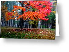 Crimson Tree Greeting Card