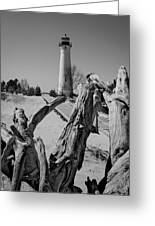 Crisp Point Lighthouse With Driftwood Greeting Card