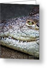 Crocodile Eye Greeting Card