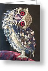 Crooked Owl Greeting Card