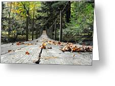 Cross At Own Risk Greeting Card