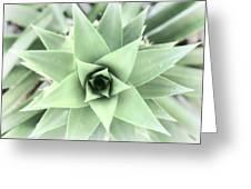 Cross Process Pineapple Greeting Card