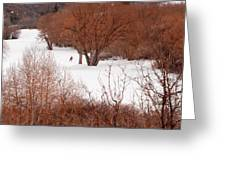 Crosscountry Skier Greeting Card