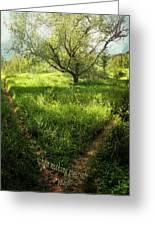 Crossing Paths Greeting Card