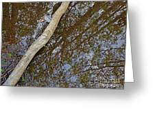 Crossing Reflections Greeting Card