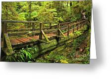 Crossing The Rainforest Ravine Greeting Card