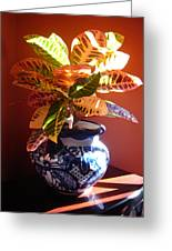 Croton In Talavera Pot Greeting Card