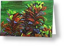 Crotons 6 Greeting Card