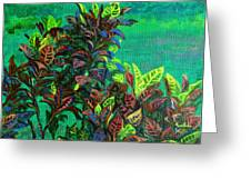 Crotons 7 Greeting Card