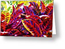 Crotons Sunlit 1 Greeting Card
