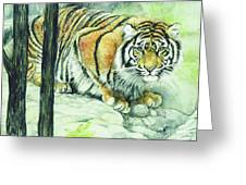 Crouching Tiger Greeting Card