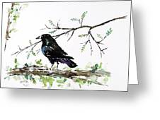 Crow On Branch Greeting Card