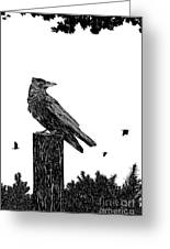 Crow On Fence Post Greeting Card