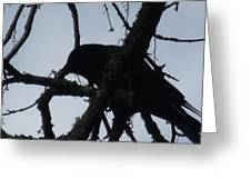 Crow Silouette Greeting Card
