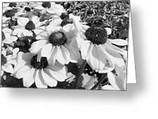 Crowded Flowers Greeting Card