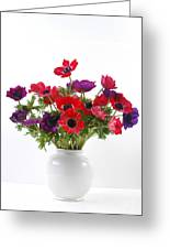 crown Anemone in a white vase Greeting Card