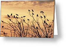 Crows In Their Twitter Cloud. Greeting Card
