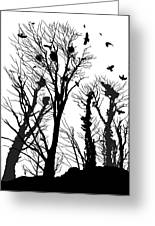 Crows Roost 1 - Black And White Greeting Card