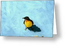 Crumbs -bird Painting Greeting Card