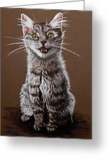 Cry Baby Greeting Card by Brent Ander
