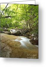 Crystal Brook - Lincoln New Hampshire Usa Greeting Card