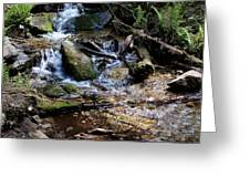 Crystal Clear Creek Greeting Card