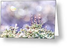 Crystal Silence Greeting Card