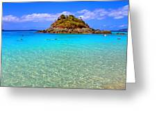 Crystal Waters Greeting Card by Scott Mahon
