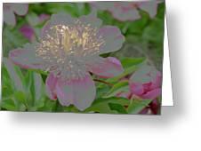 Crystalline Flower Greeting Card