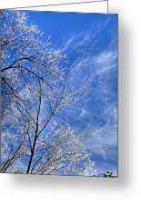 Crystalline Sky Greeting Card