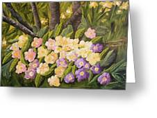 Crystal's Primroses Greeting Card