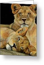 Cub Brothers Greeting Card