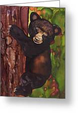 Cubby Climbing Greeting Card