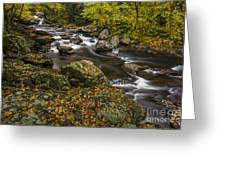 Cullasaja River In Autumn Greeting Card