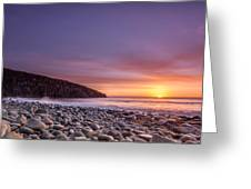 Cullernose Point At Sunrise Greeting Card