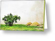 Culture Medley Greeting Card