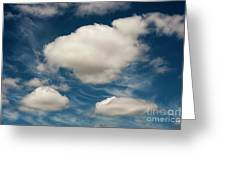 Cumulus Clouds With Nature Patterns Greeting Card