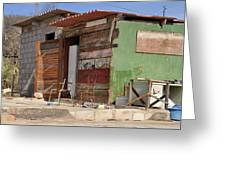 Curacao Wooden Shack  Greeting Card