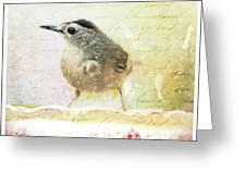 Curious Catbird Greeting Card
