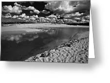 Curl Curl Beach With Dramatic Sky Greeting Card