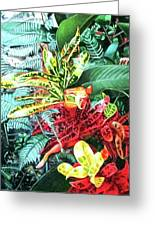 Curley Crotons Greeting Card