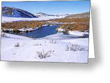Currant Creek On Ice Greeting Card