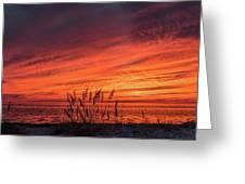 Currituck Sunset II Greeting Card