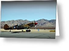 Curtis P40 Warhawk Greeting Card