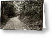 Curve In The Road Greeting Card