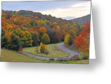 Curve Of Color Greeting Card