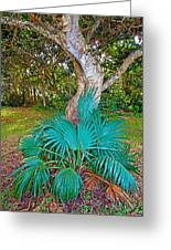 Curves And Fronds Greeting Card